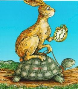 turtle-rabbit - copia